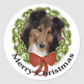 Sweet Sheltie Sticker
