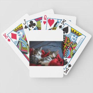 Sweet sleeping Kitties Bicycle Playing Cards