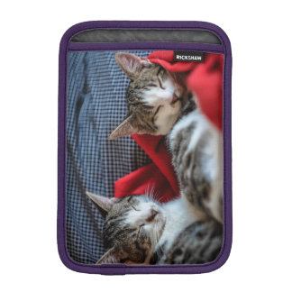 Sweet Sleeping Kitties iPad Mini Sleeve
