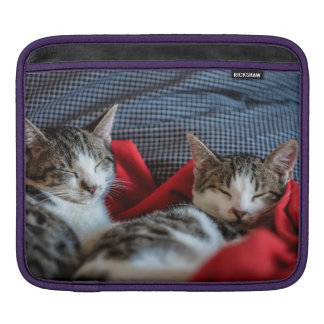 Sweet Sleeping Kitties iPad Sleeve