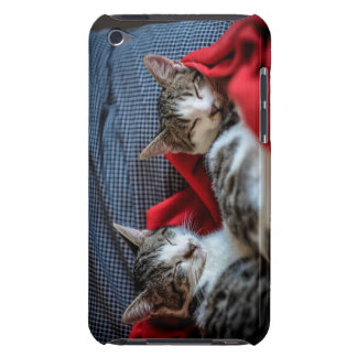 Sweet Sleeping Kitties iPod Touch Cover