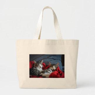 Sweet sleeping Kitties Jumbo Tote Bag