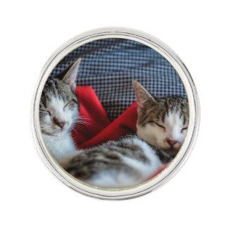 Sweet Sleeping Kitties Lapel Pin
