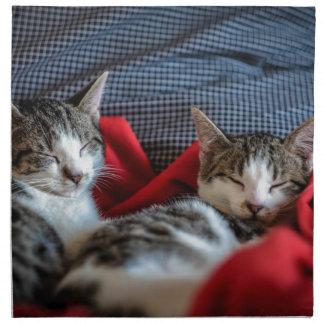 Sweet sleeping Kitties Napkin