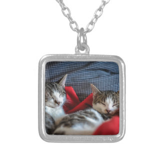Sweet sleeping Kitties Silver Plated Necklace