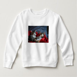 Sweet Sleeping Kitties Sweatshirt