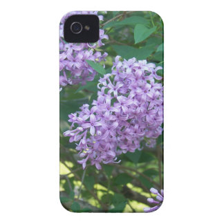 Sweet Smelling Lilacs iPhone 4 Case