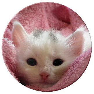 Sweet soft Kitty Porcelain Plates