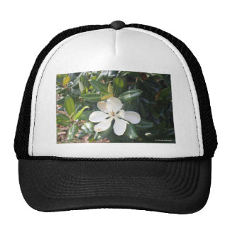 Sweet Southern Georgia Magnolia Trucker Hat