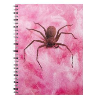 Sweet spider notebooks