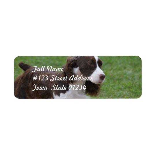 Sweet Springer Spaniel Return Address Label