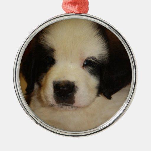 Sweet St. Bernard Puppy Christmas Ornament