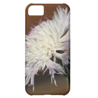 Sweet Sultan iPhone 5C Cover