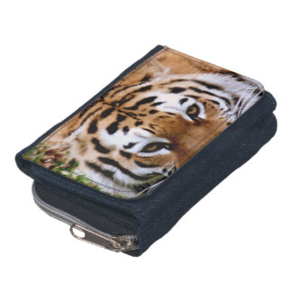 Sweet Tiger Wallet