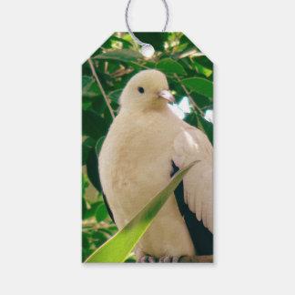 Sweet White Bird Gift Tags