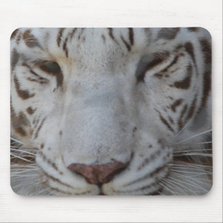 Sweet White Tiger Mouse Pad