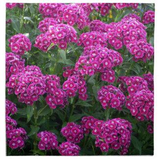 Sweet William in Bold Bloom Napkin
