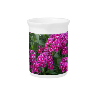 Sweet William in Bold Bloom Pitcher