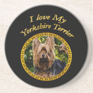 Sweet Yorkshire terrier small dog Coaster