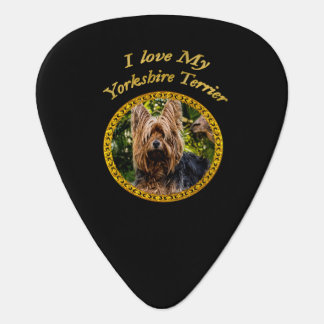 Sweet Yorkshire terrier small dog Guitar Pick