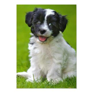 sweet young puppy dog 13 cm x 18 cm invitation card