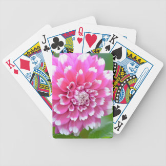 Sweetness Bicycle Playing Cards