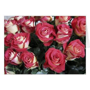 Sweetness Rose arrangement at Hacienda Compania