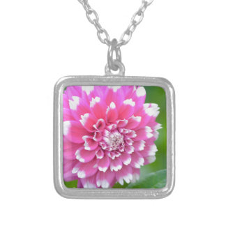 Sweetness Silver Plated Necklace