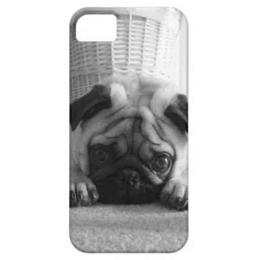 SweetPea Pugs iPhone 5/5S Cover