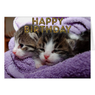 Sweets sleepy kitties greeting card