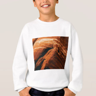 swelling red rock sweatshirt
