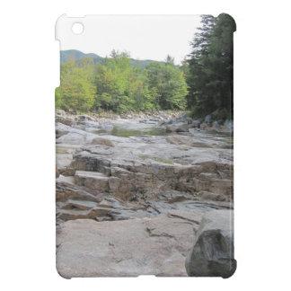 Swift River Case Savy Glossy IPad Mini Case
