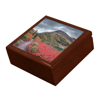 Swiftcurrent Pass Trail - Glacier National Park Gift Box