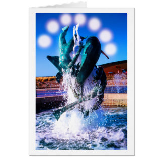 SWIM WITH DOLPHINS CARD