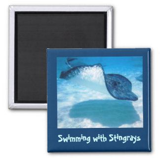 Swim with Rays SWRS1 Magnet