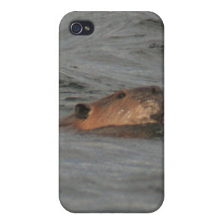 Swimming Beaver 4/4s iPhone 4 Cover
