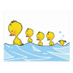 Swimming duck family postcard