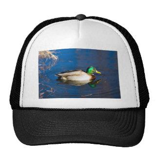 Swimming Duck Hat