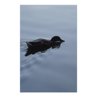 Swimming Duck in Lake, Nature Bird Wildlife Blue Customized Stationery