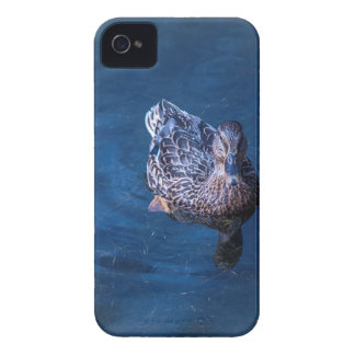 Swimming Duck iPhone 4 Cases
