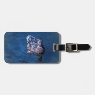 Swimming Duck Luggage Tag