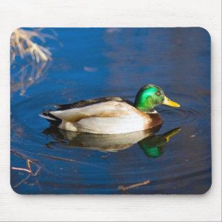 Swimming Duck Mousepad