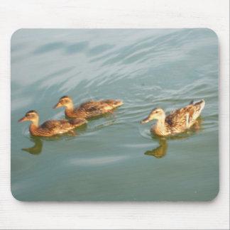 Swimming Ducks Mouse Mats