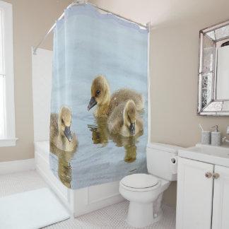Swimming Ducks Shower Curtain