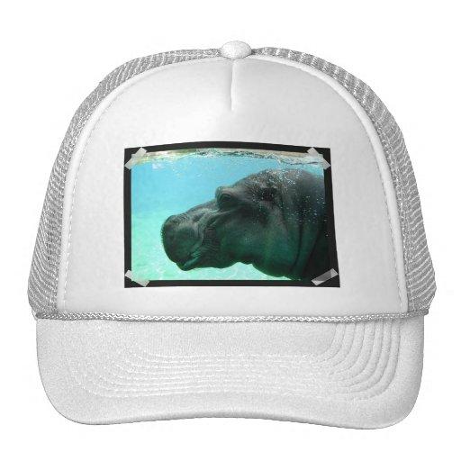 Swimming Hippo Baseball Hat
