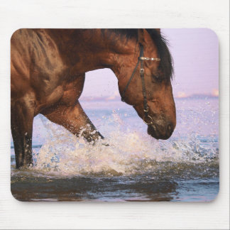 swimming horse mouse pad