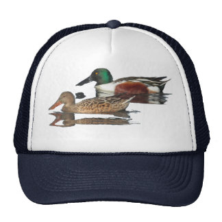 Swimming Northern Shovelers Hat