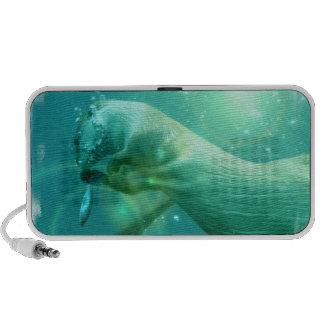 Swimming Otter Speakers