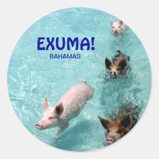 Swimming salt water pigs sticker