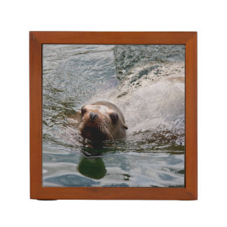 Swimming seal desk organiser